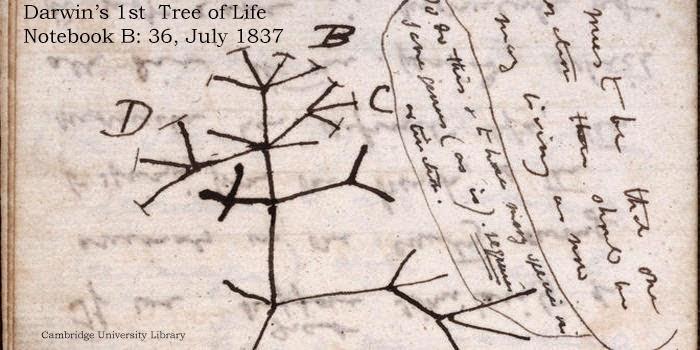 Digitalización de los manuscritos del creador de la teoría de la evolución, Charles Darwin..