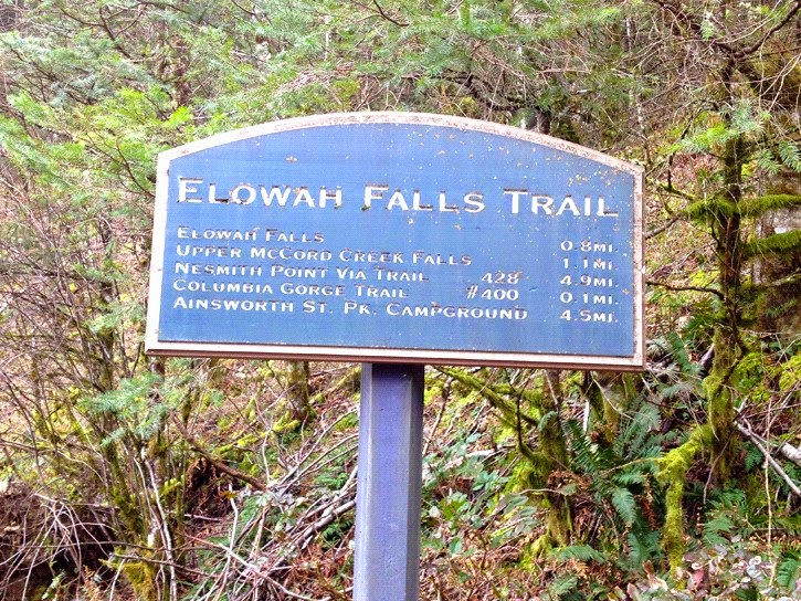 Detail Board of Stunning Elowah Falls, Columbia River Gorge, Oregon, USA