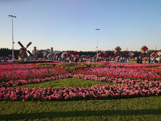 miracle garden flower garden dubai