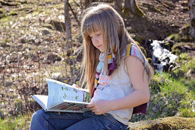 Image: Child Reading, by Petra/Pezibear on Pixaby