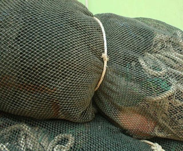 Pemilik Kapal Pukat Trawl Bakal Kena Jerat Hukum; Atas Adanya Larangan Beroperasi
