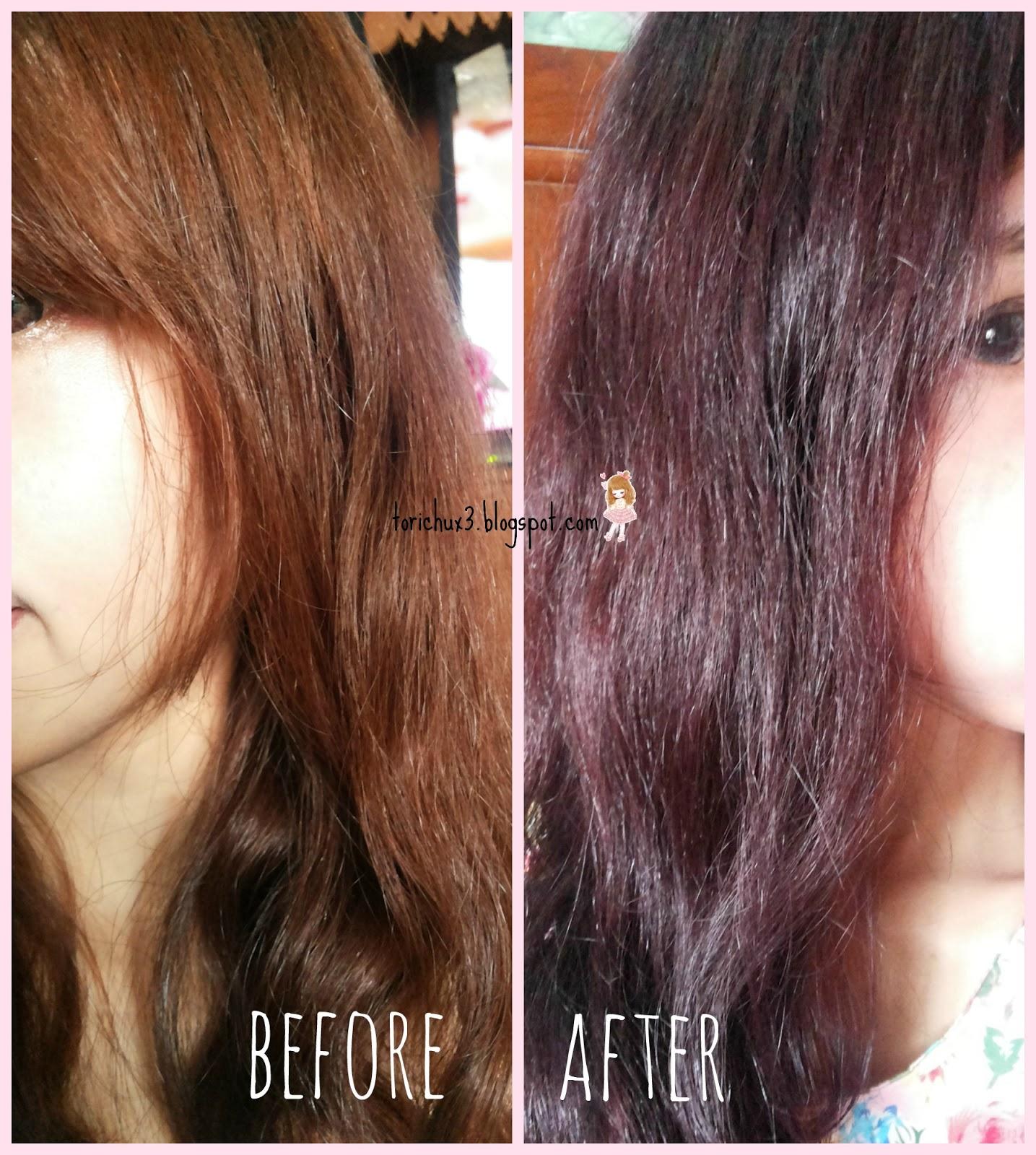 Tori Chu Review Garnier Color Naturals Cream 3 16 Burgundy