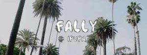 Download Video | Fally Ipupa - Doc Jeff