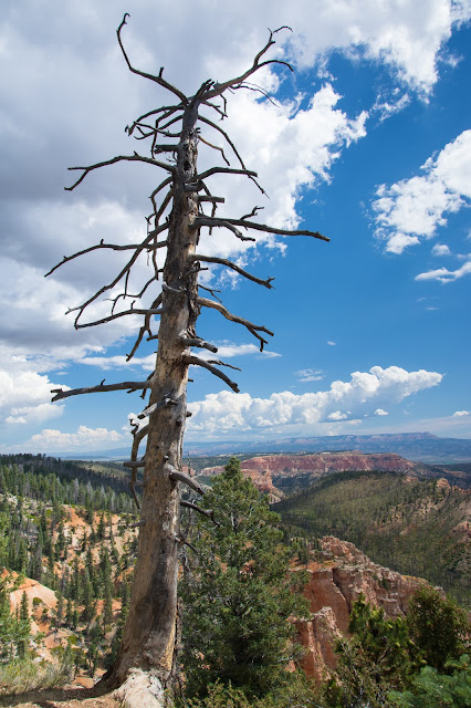 Piracy Point, Bryce Canyon National Park