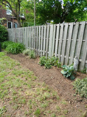 New Backyard Perennial Garden Installation After in Toronto's The Junction by Paul Jung Gardening Services--a Toronto Gardening Company