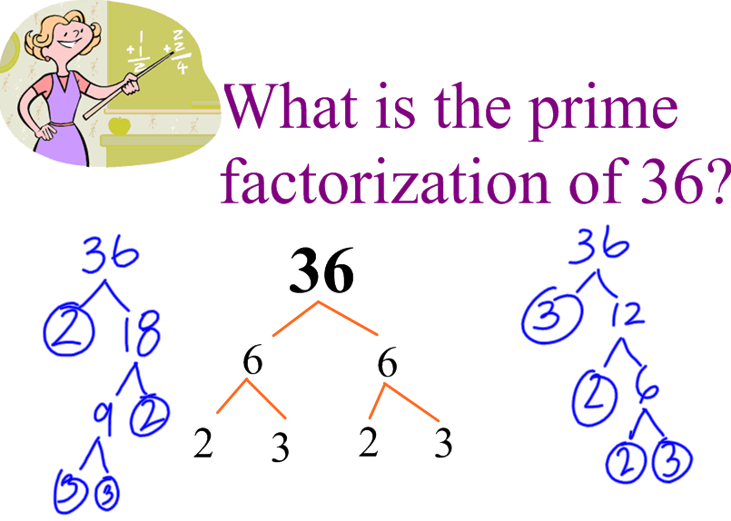 Do my homework of prime factorization