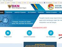 http://sscn.bkn.go.id 2017 Website Pendaftaran CPNS Online