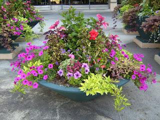 Tukang Taman (Taman Mini Dalam Pot) | Miniatur Taman Untuk Hiasan Ruang Tamu, Ruang Kerja Dan Ruang Santai