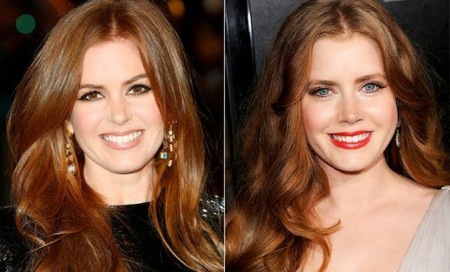 Isla Fisher e Amy Adams