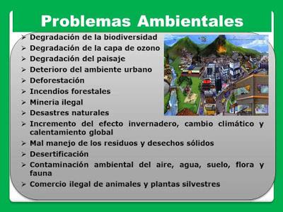 principales problemas ecologicos