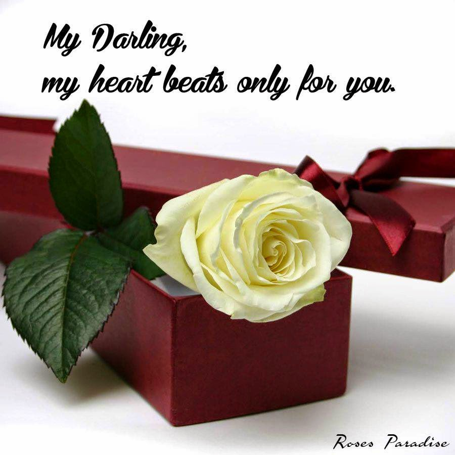 My Darling My Heart Beats Only For You Heartfelt Love And Life