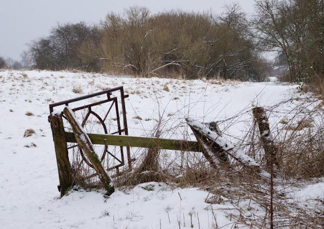 Rund um den Tröndelsee: Unser Winter-Spaziergang mit Schlitten. Viele Wege und Stege führen durch das Naturschutzgebiet Tröndelsee und Umgebung.
