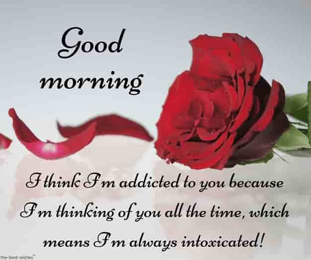 gud mrng with red rose text to him