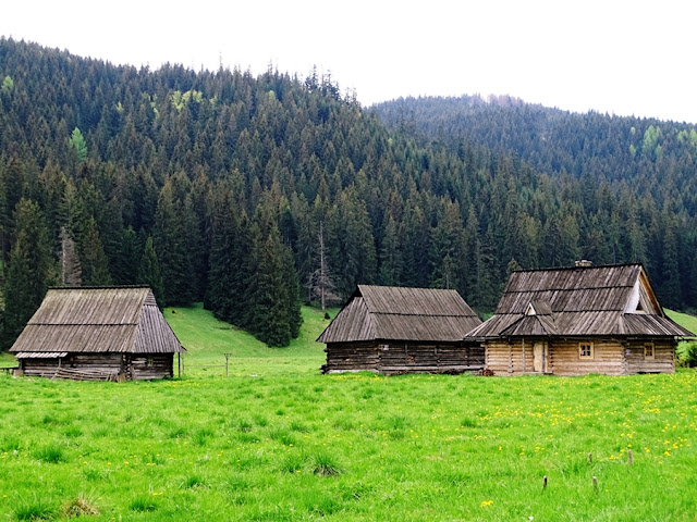 trasa do Doliny Chochołowskiej