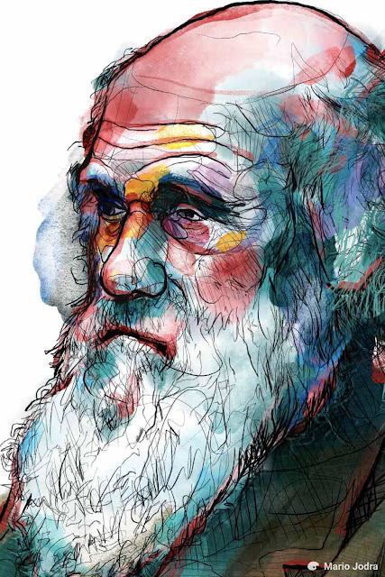 carlos romero filho carlos augusto romero filho cosmologia fisica quantica deus existencia de deus albert einstein ciencia e religiao