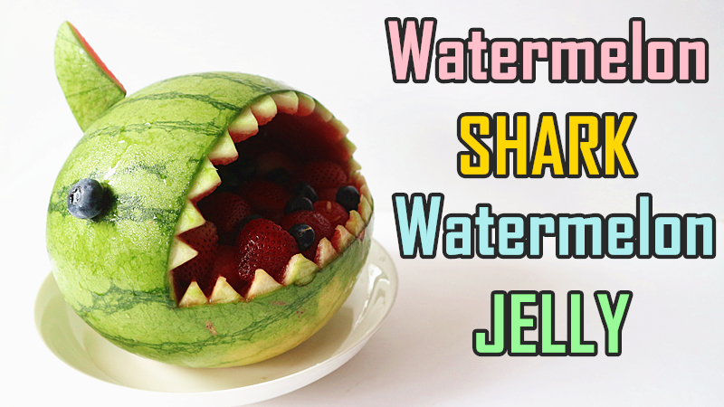 Watermelon Shark 西瓜鯊魚 | Watermelon Jelly 西瓜果凍