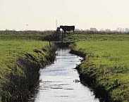 cover foto Embankments 2.0 as part of the transition to a robust water system : perspective for the Frisian peat area