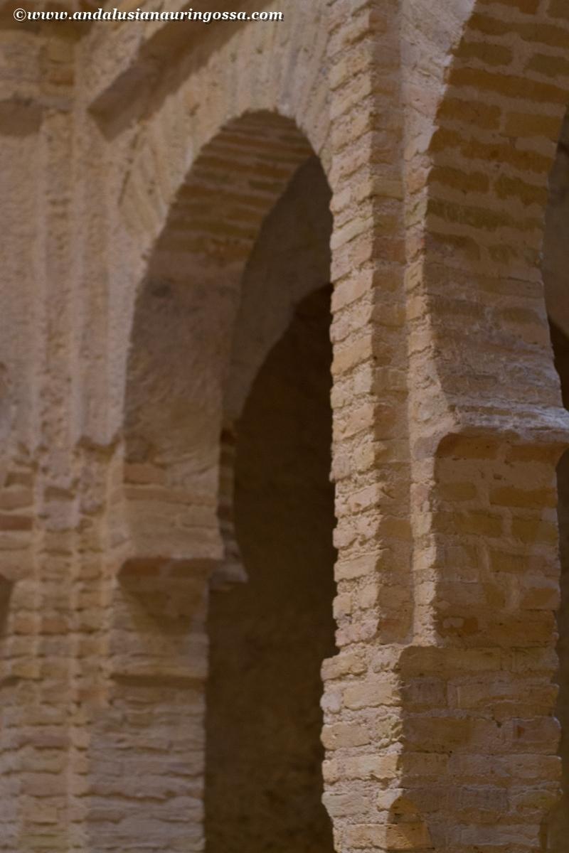 Jerez Alcazar 24