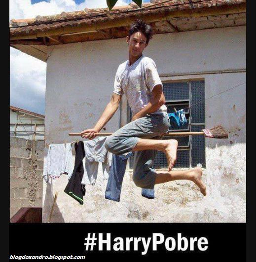 Harrypobre.png (519×531)