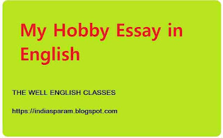 my hobby essay in english for th class