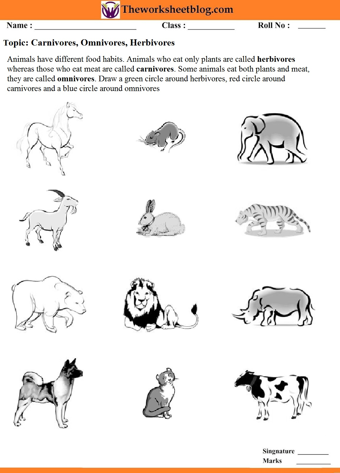 Animal Around Us Worksheet