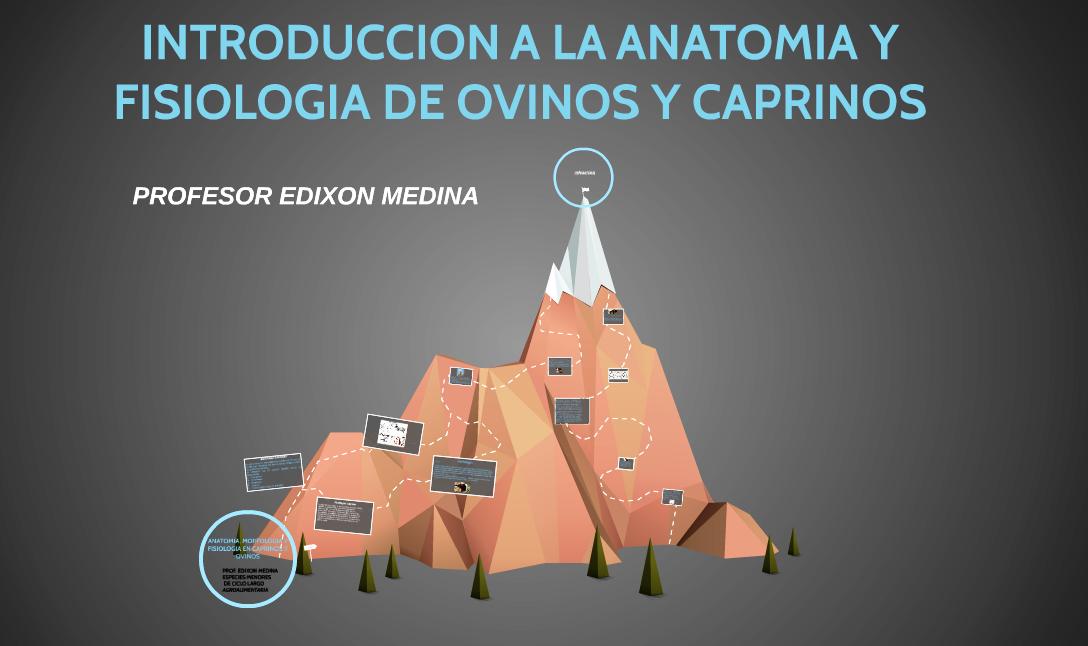 TEMA 1 DE ESPECIES MENORES DE CICLO LARGO | PROF. EDIXON MEDINA ...
