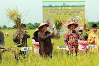 Indonesia negara agraris