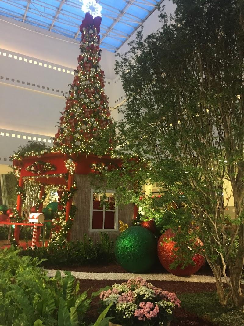 """Grand Plaza Shopping promove """"Acampamento de Natal"""" para realizar o sonho de crianças atendidas por ONG do ABC"""