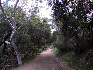 Heading south on Brush Canyon Trail