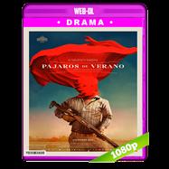 Pájaros de verano (2018) WEB-DL 1080p Audio Latino