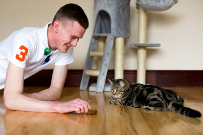 Cats Protection Belfast Adoption Centre Macavity