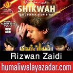 http://www.humaliwalayazadar.com/2012/10/rizwan-zaidi-nohay-2003-2013.html