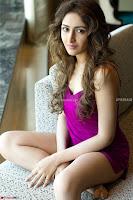 Sayesha Sehgal ~  Exclusive Pics 009.jpg
