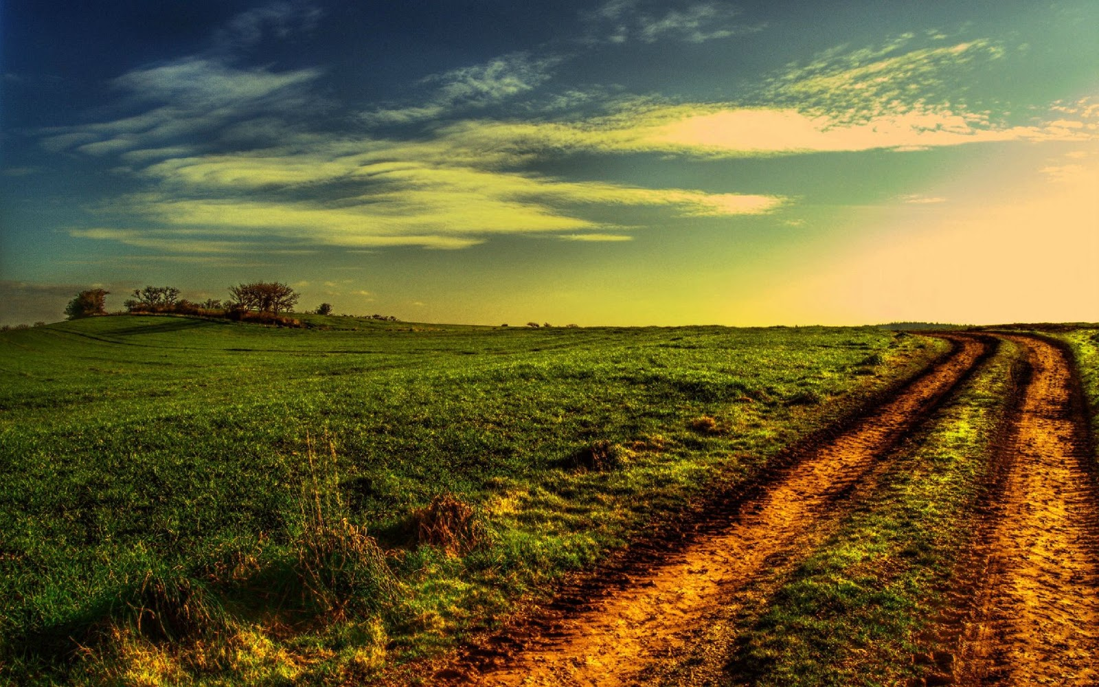 Green Field Wallpapers