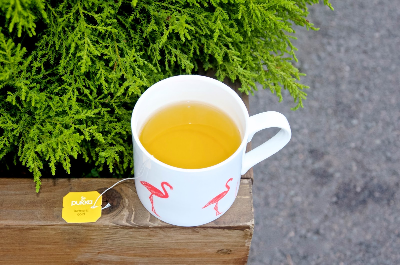 flamingo mug of turmeric tea and fern
