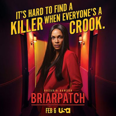 Briarpatch USA Network