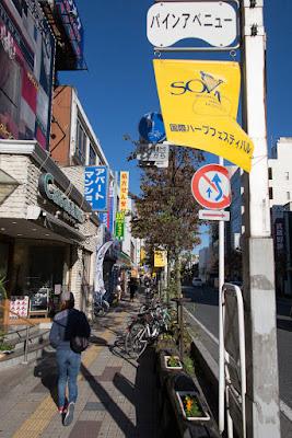 Pine Avenue, Matsubara Danchi, Soka City, Saitama Prefecture.