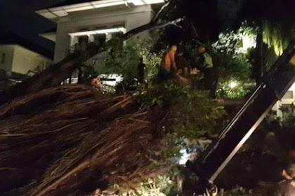 Pohon Beringin Setengah Abad Tumbang Dekat Rumah Lembang Menimpa Mobil Sedan Milik Seseorang yang Ada di Rumah Lembang