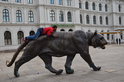 Scaling the tiger in Oslo, Norway