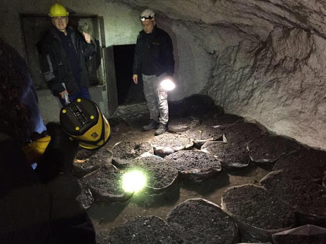 Illegal dumpsite found in Roman catacombs