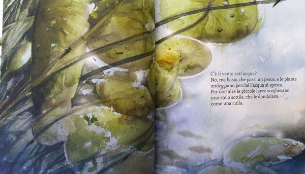 Pagina interna del libro: La storia della libellula coraggiosa