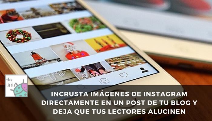 fotos blogger instagram
