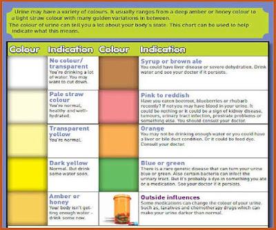 Warna urin yang menunjukkan kesehatan Apa yang Warna Urin 'Katakan' Tentang Kesehatanmu?
