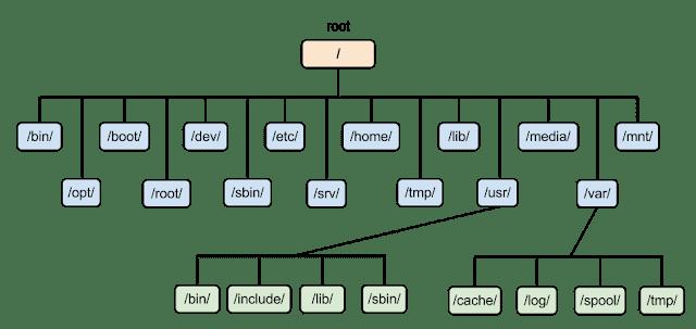 Mengenal Struktur Direktori Pada GNU/Linux