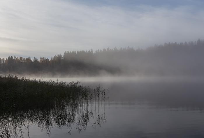 Sumuinen järvi