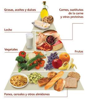 Hidratos de carbono en que alimentos se encuentran