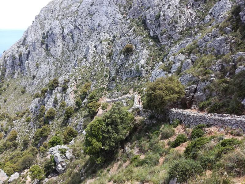Discesa da Massanella, Ses Bassetes, Teixos
