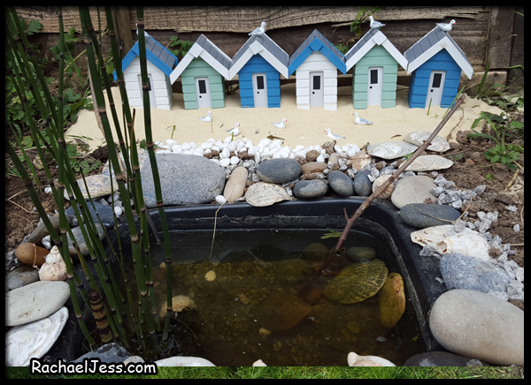 creating a beach scene round our mini pond