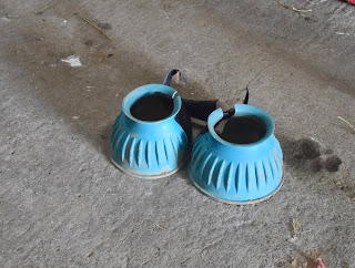 A pair of light blue bell boots for horses