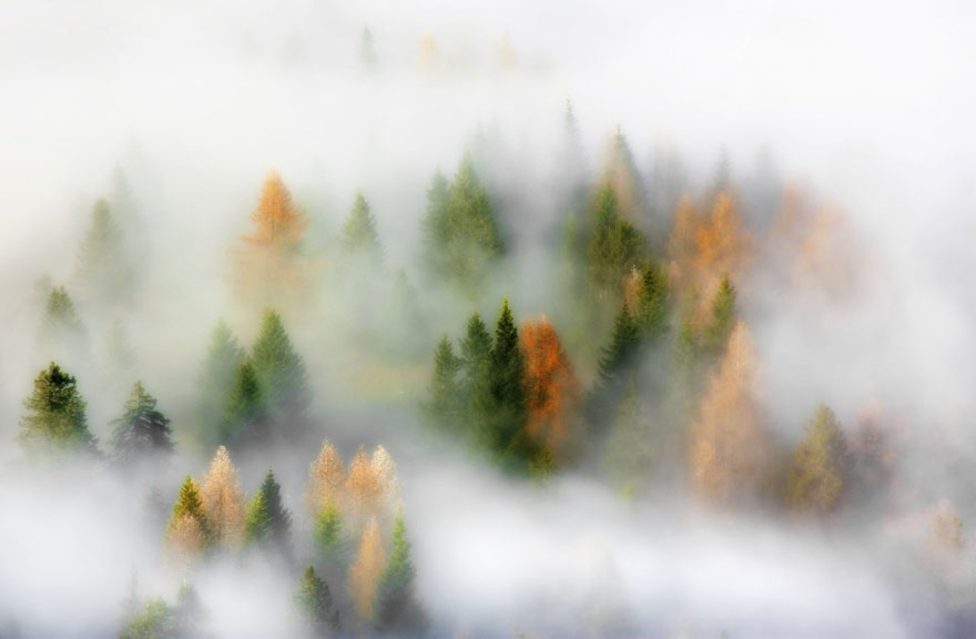 autumn-photography-3